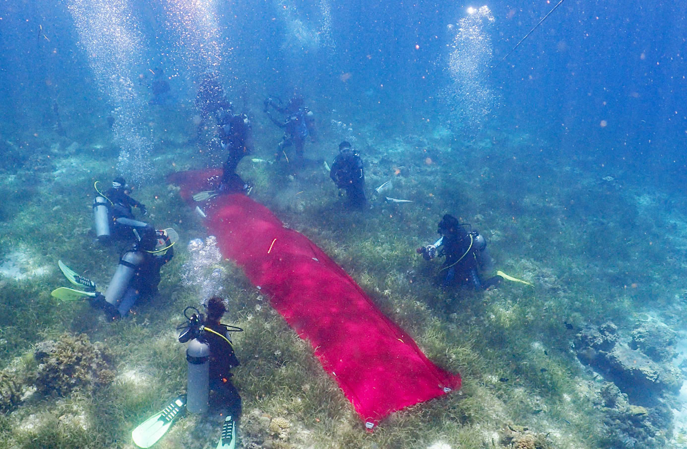 underwaterwedding-cebu (3)