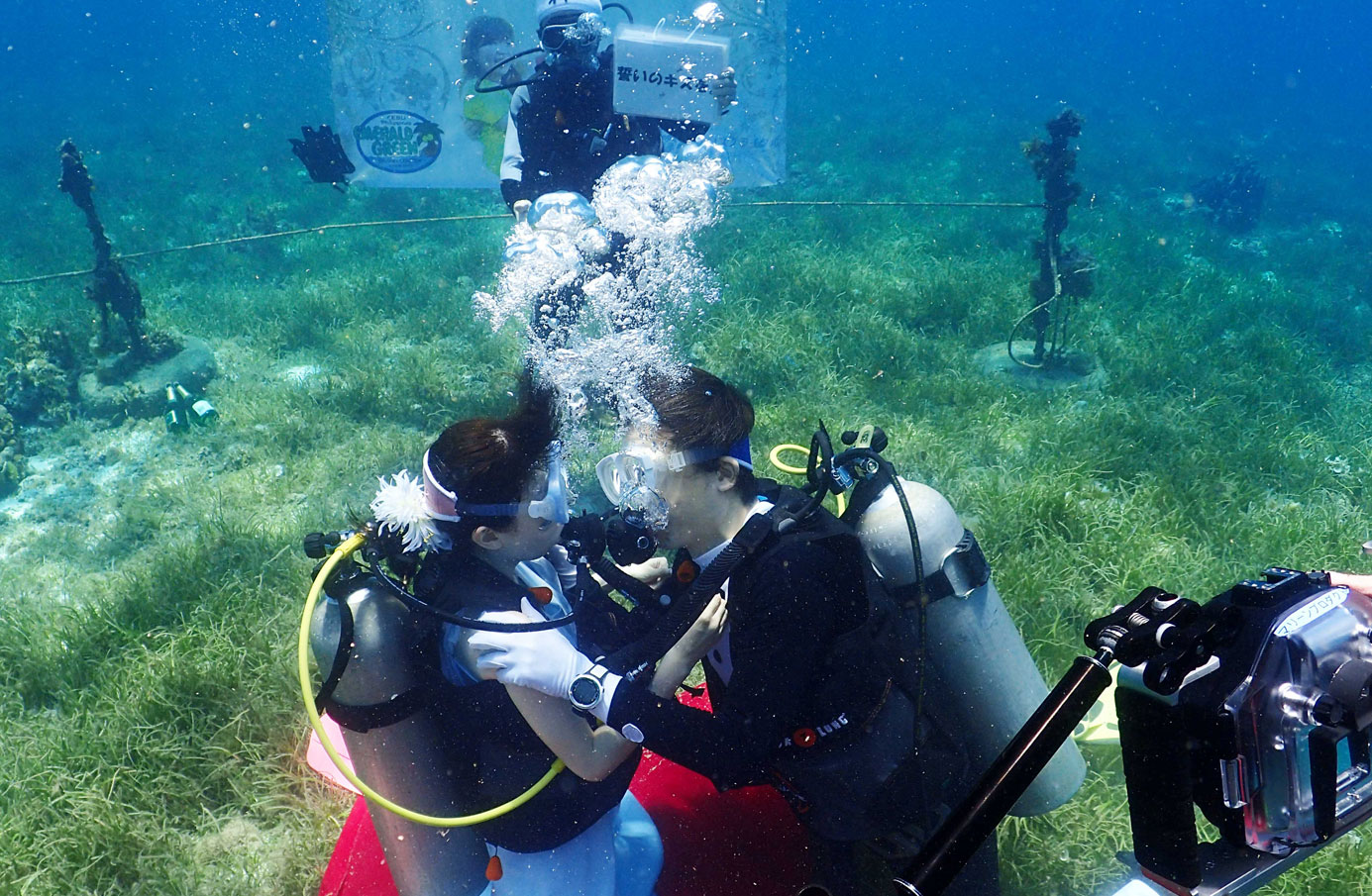 underwaterwedding-cebu (6)